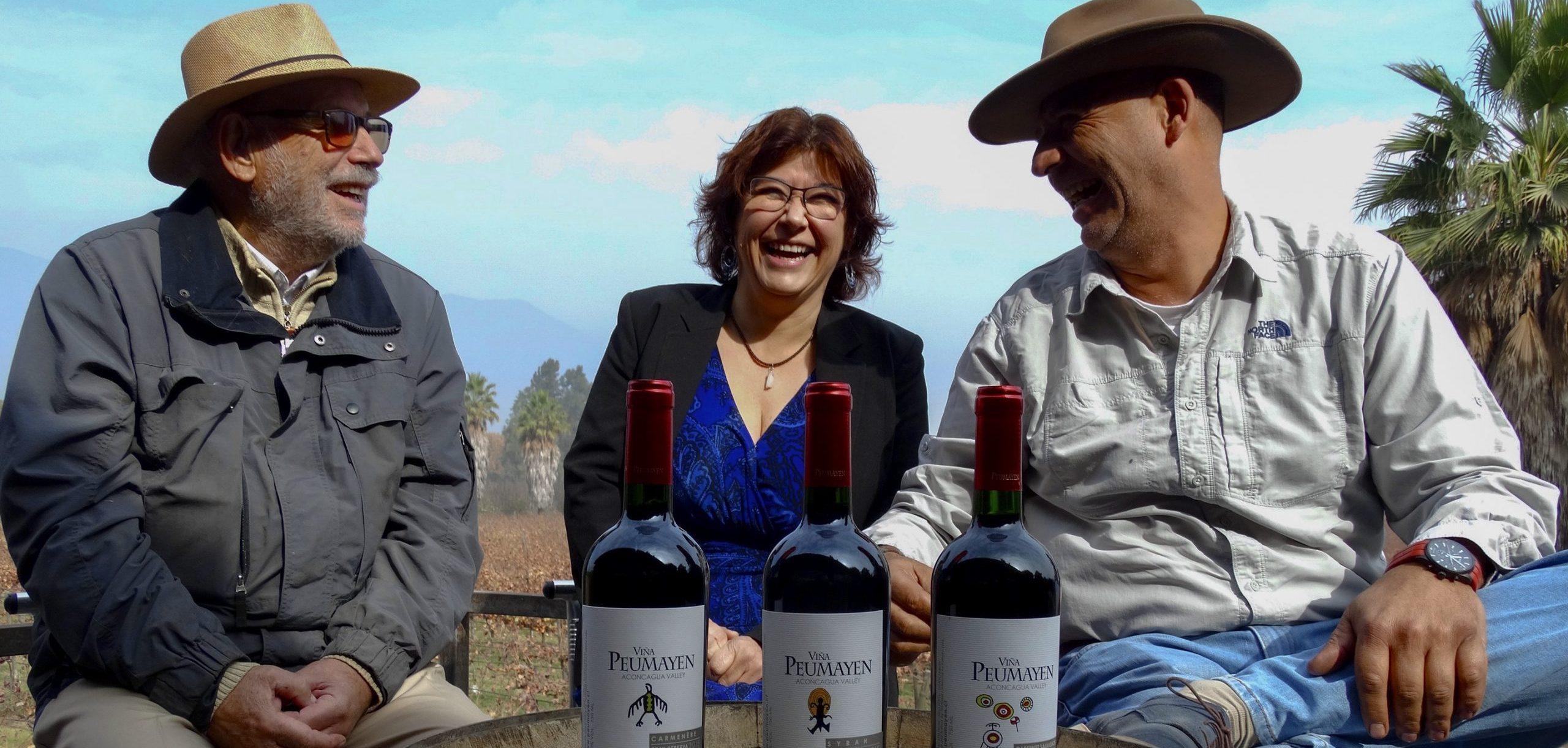 Viña y bodega Peumayen: El lugar soñado del Valle del Aconcagua, en la comuna de Panquehue